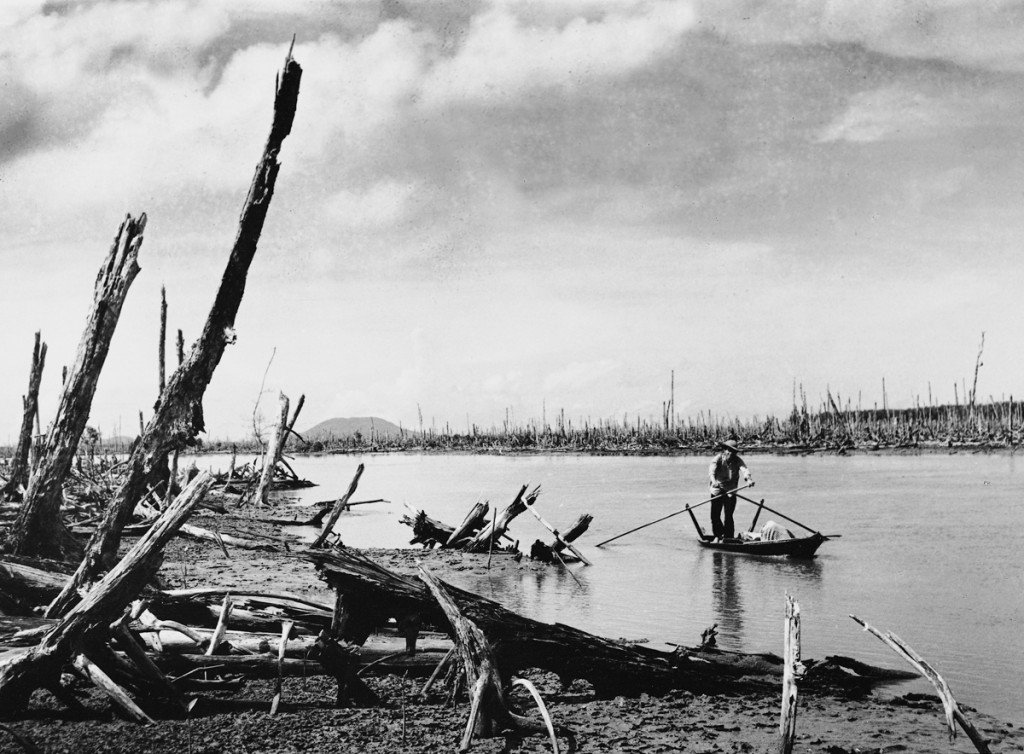1970 A guerrilla in the Mekong Delta paddles through a mangrove forest defoliated by Agent Orange. The Americans denuded the landscape with chemicals to deny cover to the Viet Cong. The photographer was sickened by what he saw, since the Vietnamese regard mangrove forests as bountiful areas for agriculture and fishing. IMAGE: LE MINH TRUONG/ANOTHER VIETNAM/NATIONAL GEOGRAPHIC BOOKS