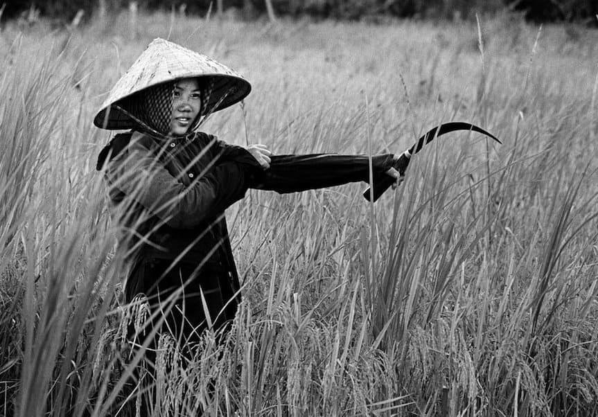 Philip Jones Griffiths' Viet Nam
